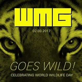 We're just one week away from #WebMeetGuildford (Thurs 2nd March, All Bar One) and we're supporting @wwf_uk for #worldwildlifeday. Who's ready to get WILD? 🦁🐯🐗🐘🐼