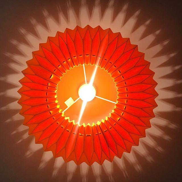 Crushing on our new Kura lamp shades 😍 #KyanCampus #LifeOfKyan